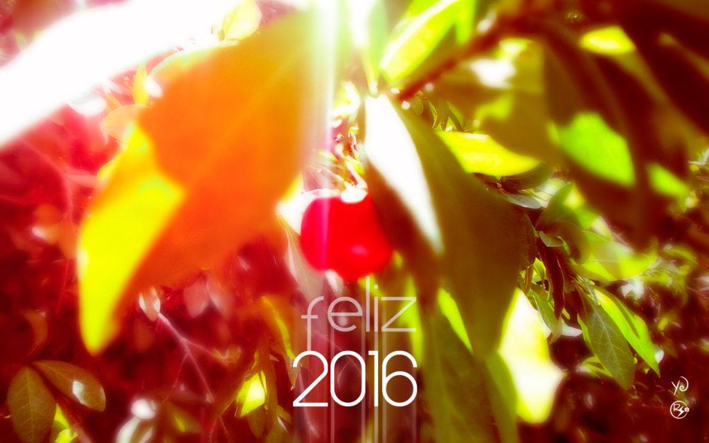 rsve_feliz_2016a